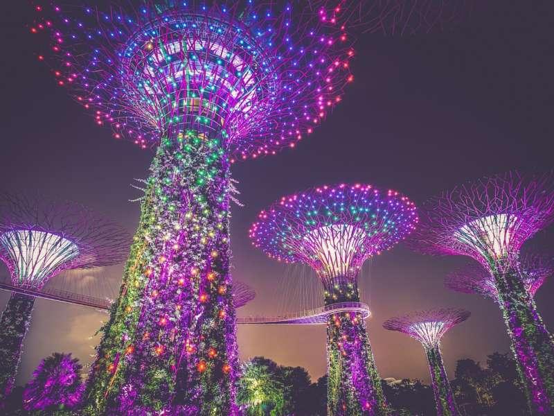 Il giardino della baia di Singapore