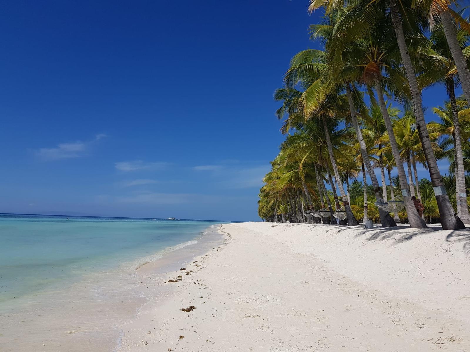 viaggio nelle filippine isola di Bohol