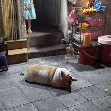vecchio quartiere vietnam
